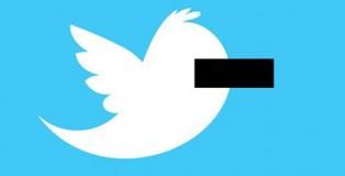 Türkiye'de Twitter'a Erişimin Engellenmesi