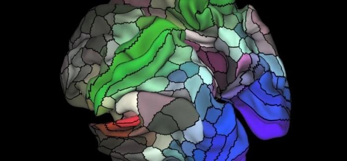 Beyin Gücünüzü Geliştirecek Çipler Artık Hayal Değil