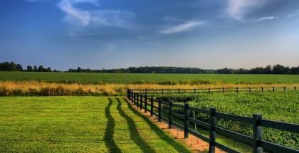 rural_land