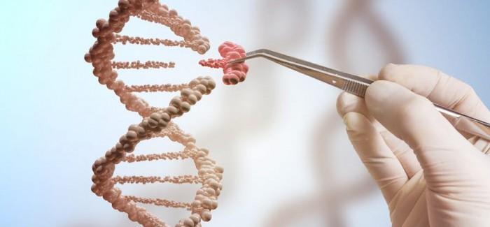 Genom Düzenleme Teknolojisi Kanser Hücrelerinin Çoğalmasını Önlemek İçin Kullanıldı