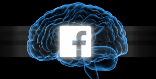 facebook brain