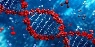 İlk Kez Elde Edilebilen DNA Replikasyonu Görüntüleri Süreç Hakkında Bildiğimiz Her Şeyi Unutturacak!