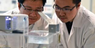 3D-bioprint
