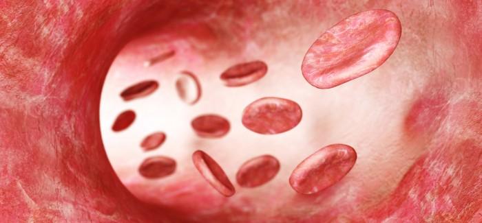 Çok Yakında Vücuttaki Tıbbi Cihazlar Kan Dolaşımıyla Şarj Edilebilecek