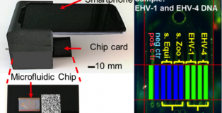 integrated-lab-on-a-chip-uses-smartphone-to-quickly-detect-multiple-pathogens-293429