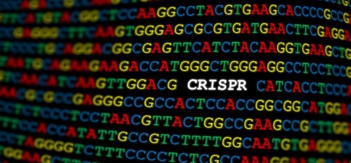 Microsoft AI, Gen Düzenleme Teknolojisinin Gelişmesine Yardımcı Olacak