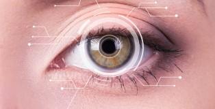 retina-kalp