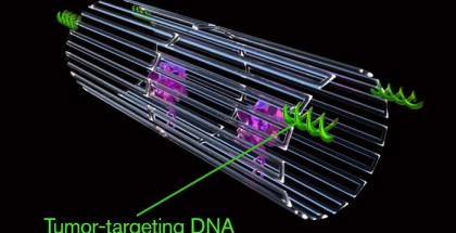 when-this-dna-origami-nanorobot-detects-blood-vessels-associated-with-tumors-it-opens-up-to-deliver