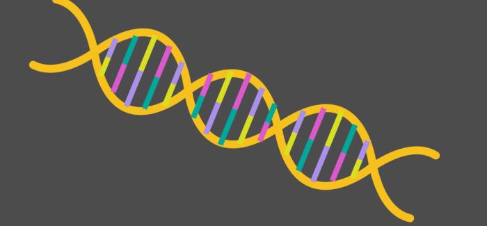 Harvard ve UC Berkeley Arasında Kılıçlar Çekildi: CRISPR Teknolojisinin Patenti Kime Ait Olacak?
