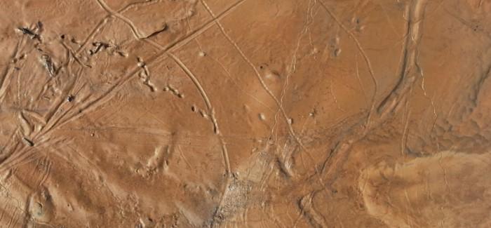 Mars'ı Haritalandıran Yapay Zeka Kanser Tedavisinde Kullanılacak