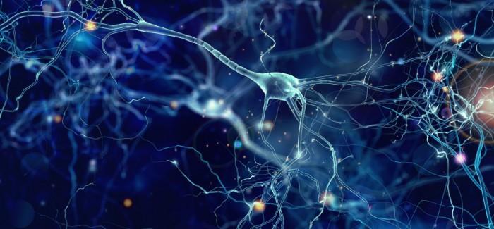 """""""Yapay Sinaptik Cihaz"""" İnsan Beyninin İşleyiş Şeklini Taklit Ediyor"""