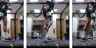 robotic-legs