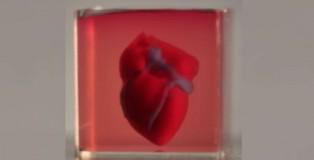 üç boyutlu kalp baskısı
