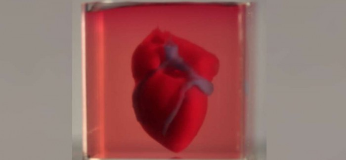 3D Yazıcı ile Üretilen Kalp, Kalp Hastalıklarına Son Verebilir!