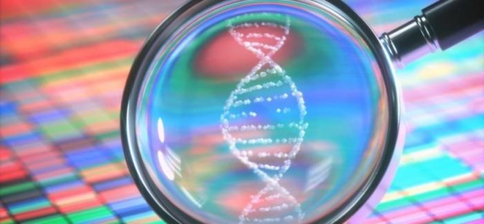 ODTÜ'lü Bilim İnsanları DNA'nın Müziğini Oluşturdu